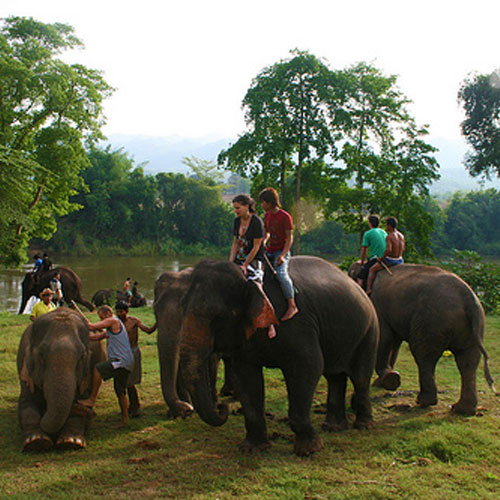 Erawan National Park and Elephant Camp