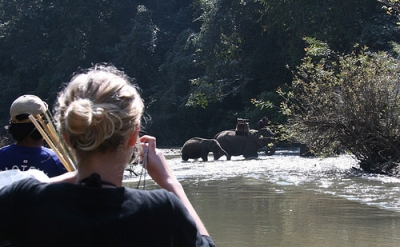 One Day Safari, Elephants, Rafting, Lisu Hilltribe
